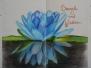 Honours Book 2013